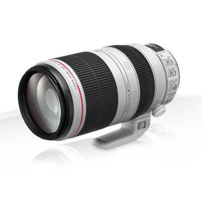Canon EF 100-400mm